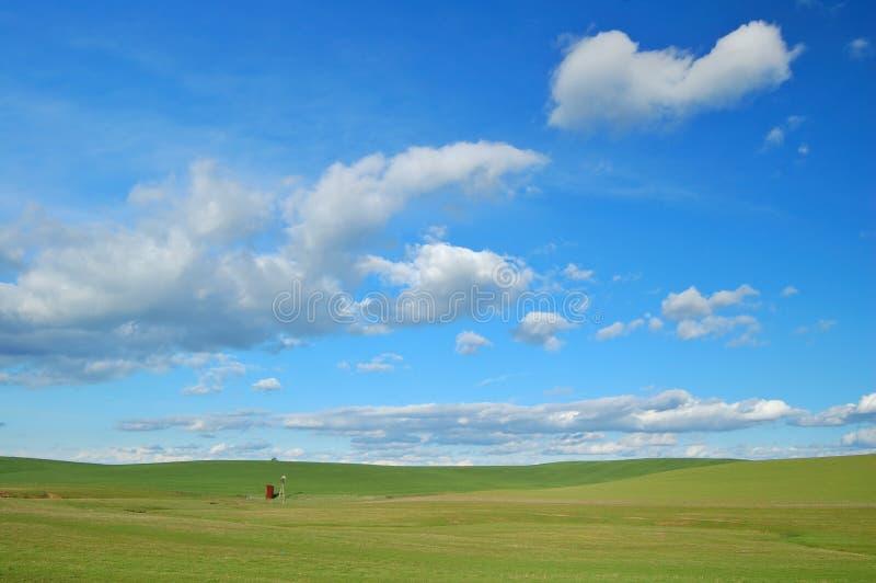 Het platteland van de lente stock foto's