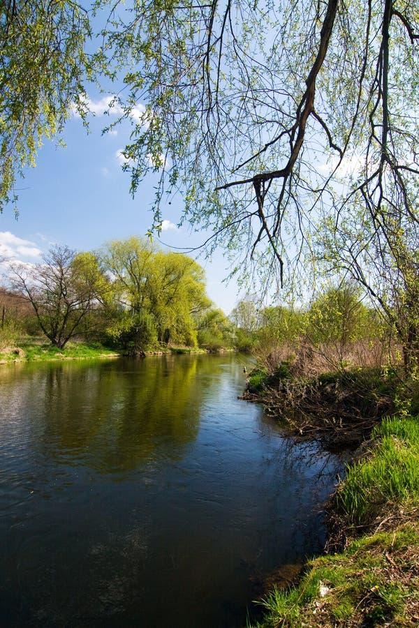 Het platteland van de lente met rivier stock afbeeldingen