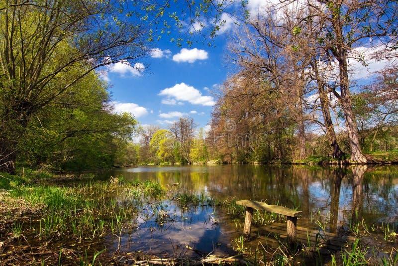 Het platteland van de lente met rivier stock fotografie