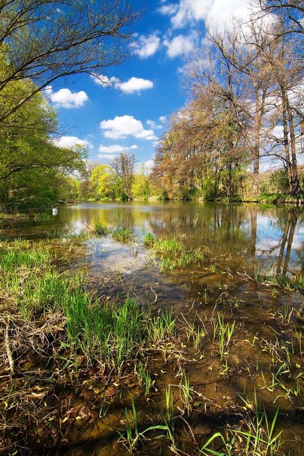 Het platteland van de lente met rivier royalty-vrije stock afbeelding