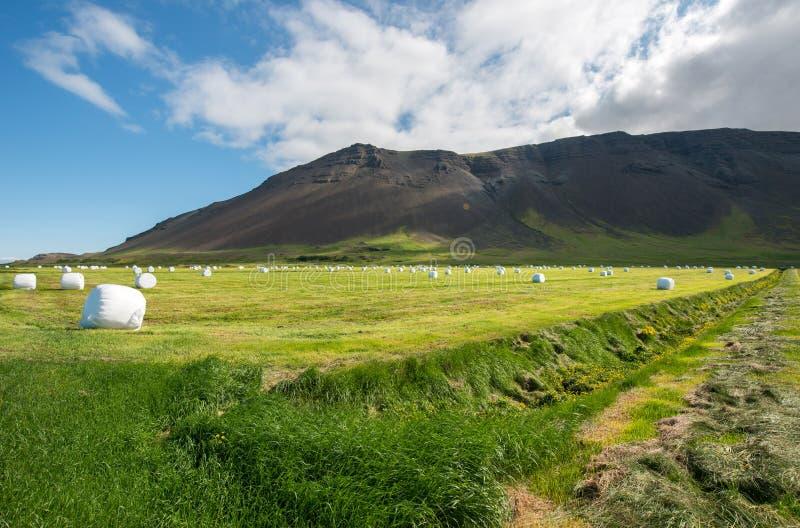 Het platteland van het Reykjanesschiereiland stock fotografie