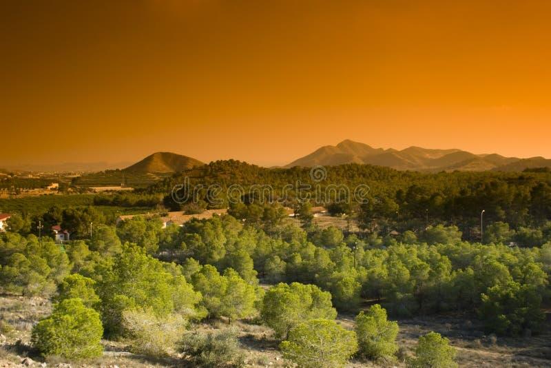 Het Platteland van Murcia royalty-vrije stock foto's