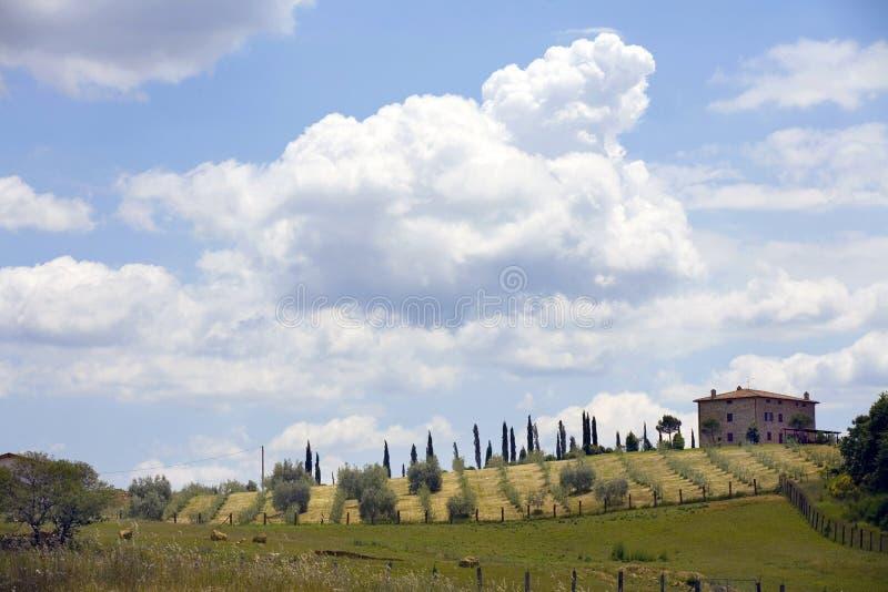 Het platteland van TOSCANIË, weinig landbouwbedrijf royalty-vrije stock afbeelding