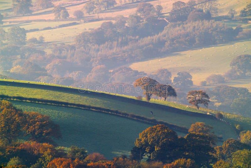 Het Platteland van Yorkshire stock afbeeldingen