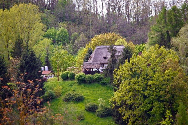 Het plattelandshuisje van het strodak in de aard stock fotografie