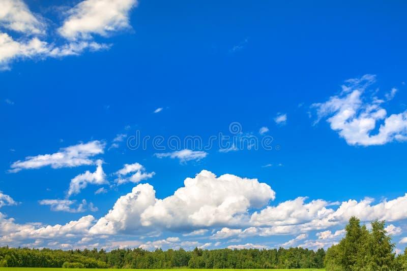 Het plattelandslandschap van de zomer met een blauwe lucht en witte wolken stock afbeeldingen