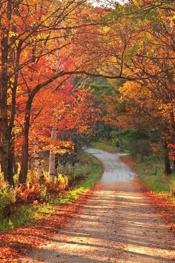Het plattelandsweg van Vermont tijdens de herfst stock afbeeldingen