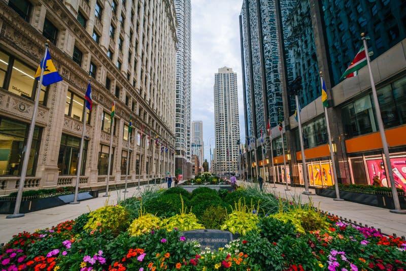 Het Plein van de Amerikanen, in Chicago, Illinois royalty-vrije stock foto