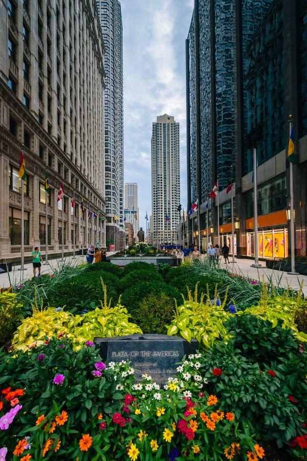 Het Plein van de Amerikanen, in Chicago, Illinois stock afbeelding