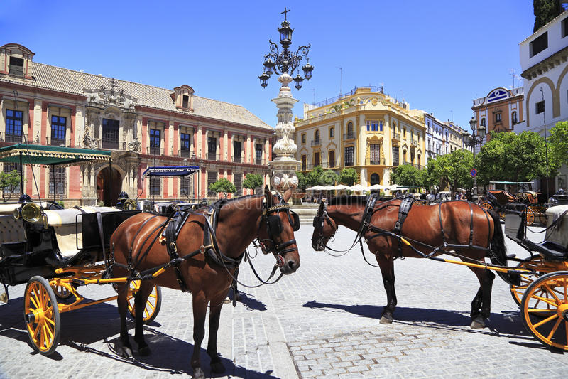 Het Plein van Sevilla met vervoer en paarden op de voorgrond royalty-vrije stock fotografie