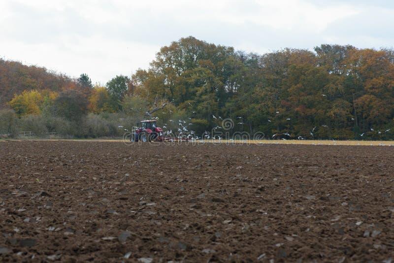 Het ploegende gebied van de tractor stock foto