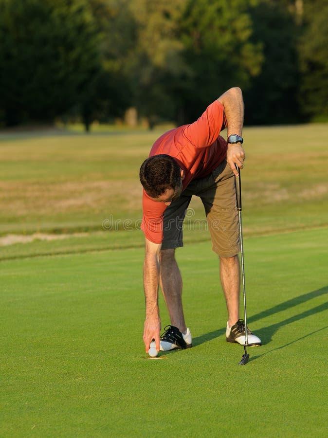Het plukken van de golfspeler royalty-vrije stock afbeeldingen