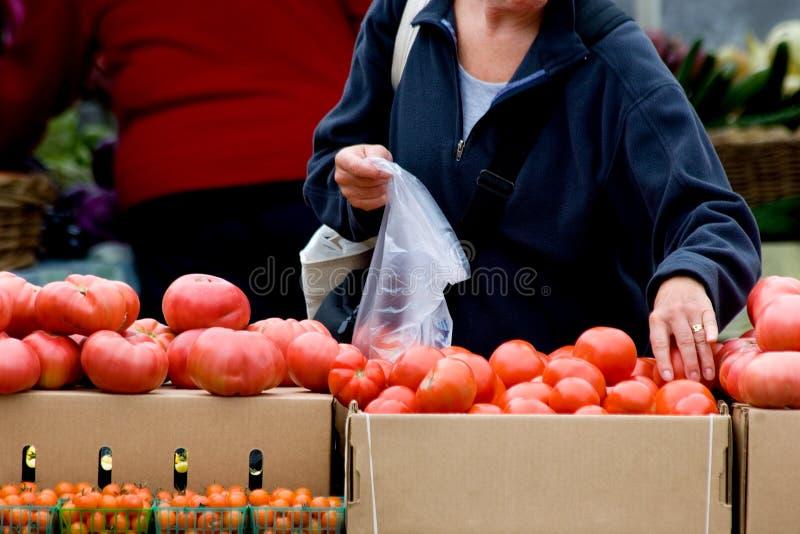 Het plukken verse groenten stock foto's