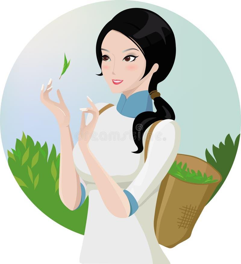 Het plukkende meisje van de thee stock illustratie