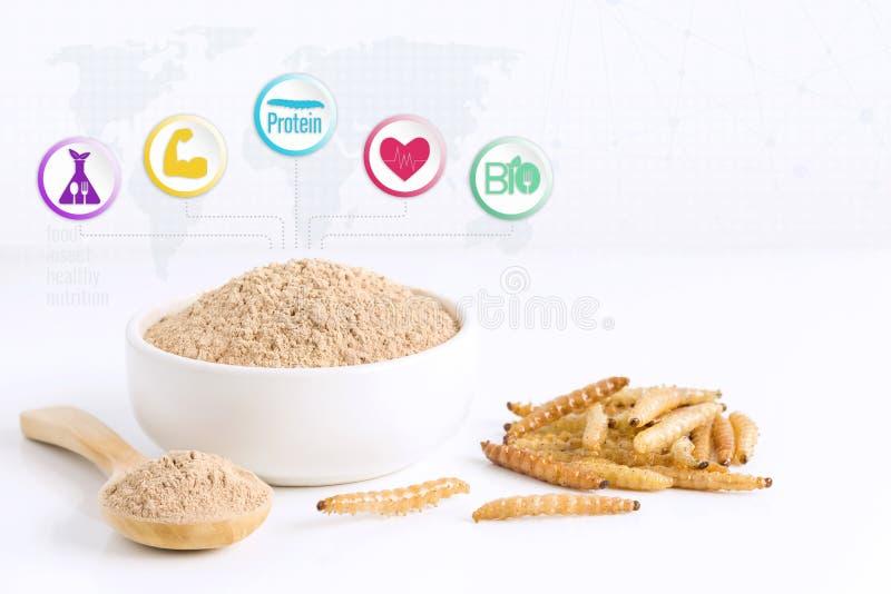 Het poederpunten van de bamboeworm van gekookt insectvlees voor het eten als eetbaar die voedsel worden gemaakt Bamboe Caterpilla royalty-vrije illustratie