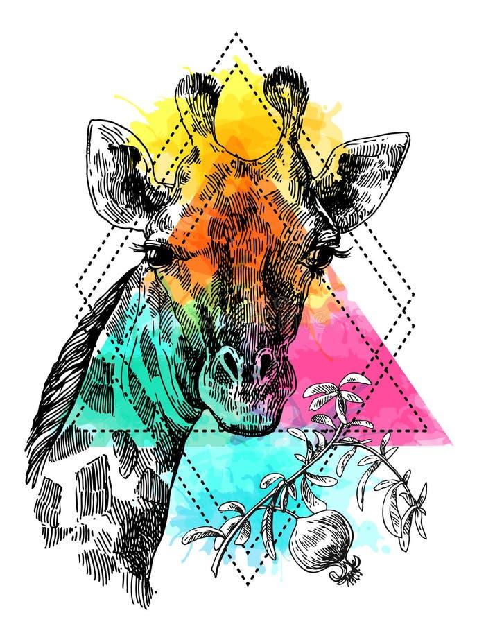 Het portret og giraf van de Beautfulhand getrokken illustratie royalty-vrije illustratie