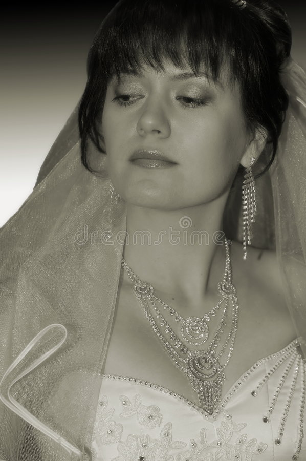 Het portret van de bruid royalty-vrije stock afbeeldingen