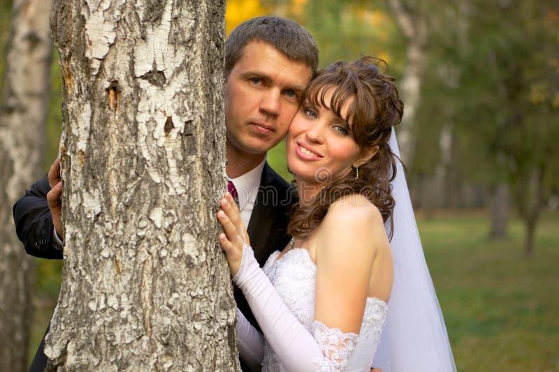 Het Portret van de bruid en van de Bruidegom stock foto