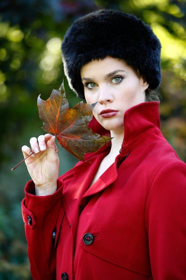 Het portret van de herfst stock foto