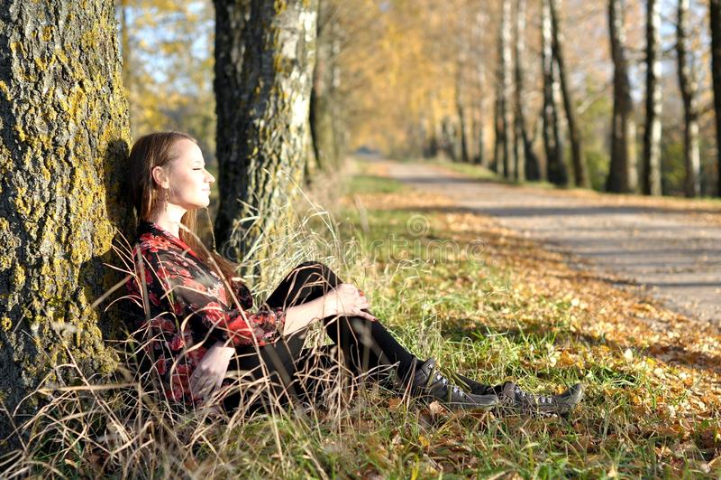 Het Portret van de herfst stock foto's