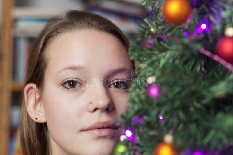 het portret van de Kerstmisboom royalty-vrije stock afbeeldingen