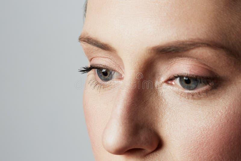 Het portret van de schoonheidsclose-up van een handsime jong wijfje met natuurlijke make-up over witte achtergrond De kosmetiek e stock afbeelding