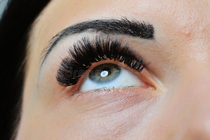 Het Portret van de Vrouw van de schoonheid Professionele Make-up Donkerbruine Mooie Mannequin Girl stock afbeelding