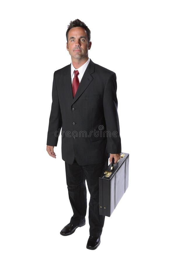 Het Portret van de zakenman royalty-vrije stock afbeelding