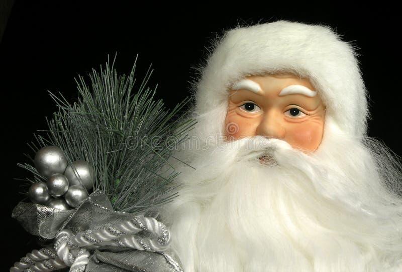 Het Portret van Doll van de kerstman stock afbeelding