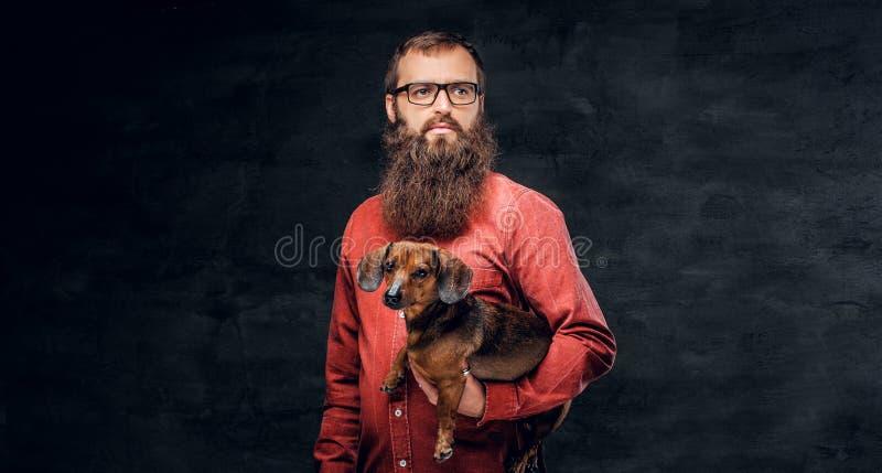 Het portret van gebaard mannetje in een rood overhemd houdt een bruine dassenhond stock foto