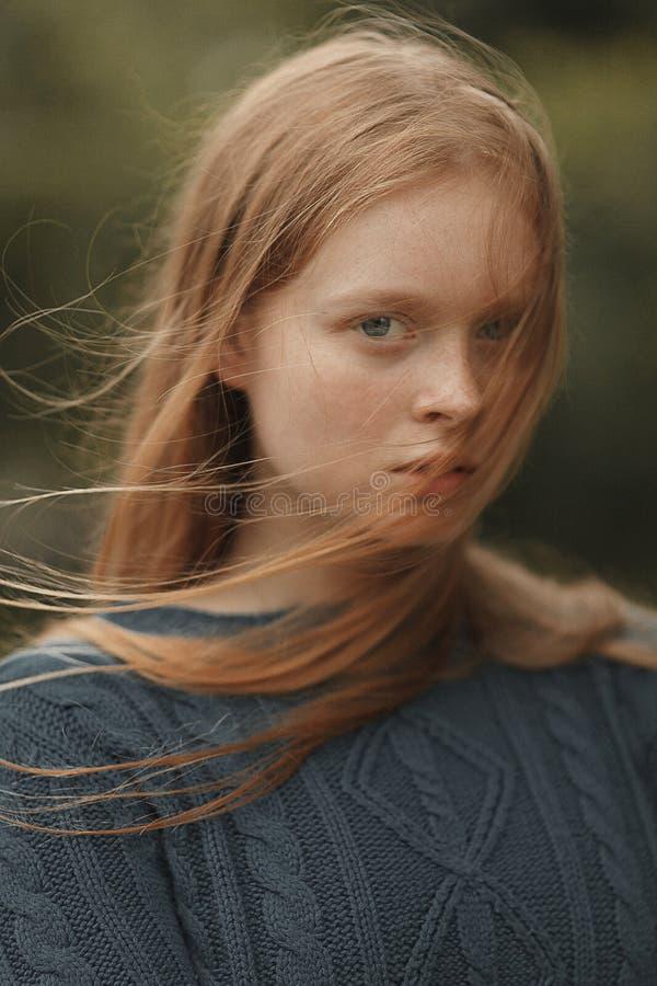 Het portret van het meisje stock foto's