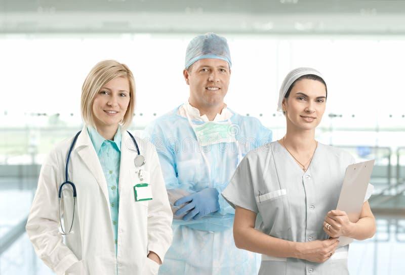 Het portret van het team van glimlachende gezondheidszorgberoeps stock foto's