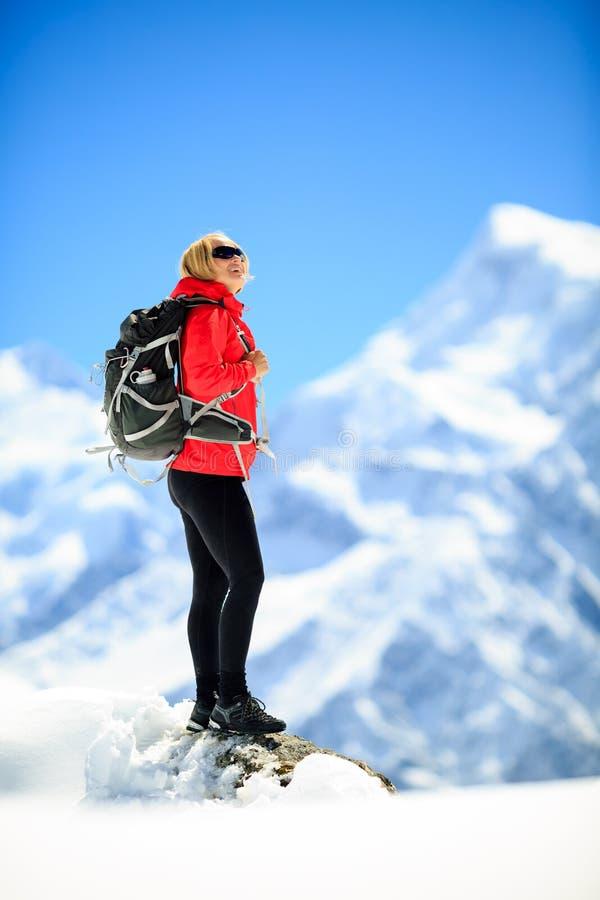 Het portret van het vrouwensucces op bergpiek stock foto's