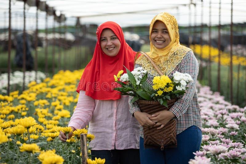 Het portret van twee zusters van Moslims verzamelt witte en gele chrysant stock afbeelding
