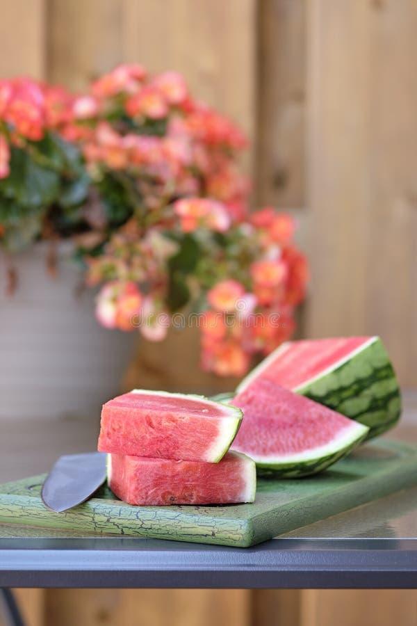 Het Portret van watermeloenplakken royalty-vrije stock foto