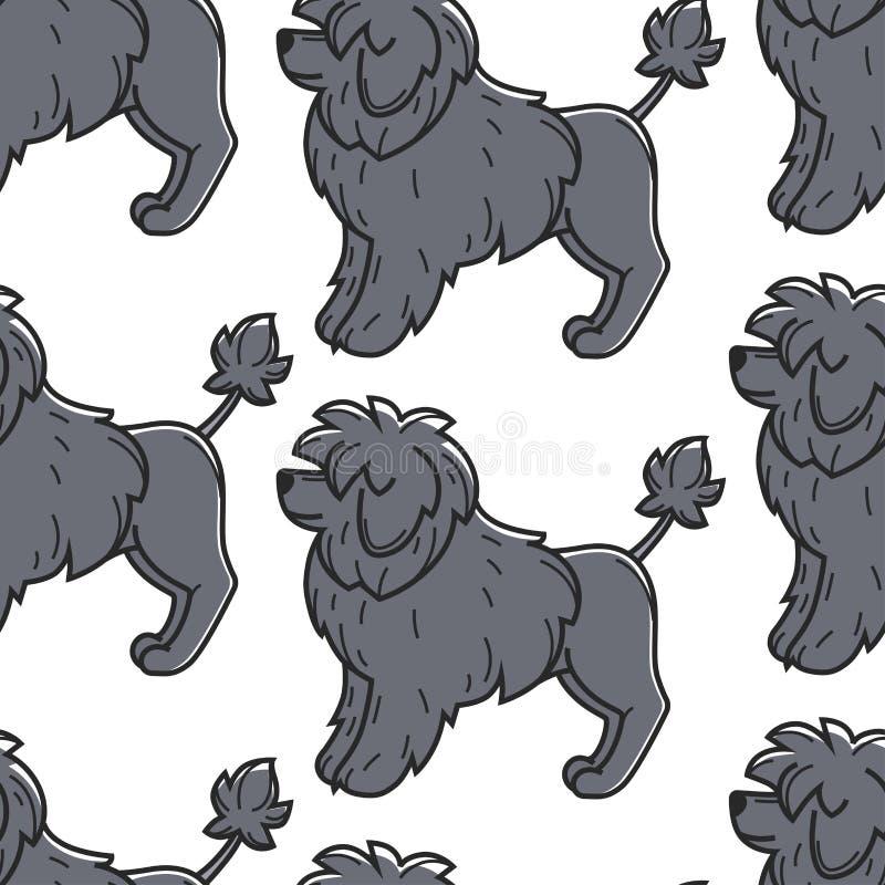 Het Portugese van het het huisdieren huisdier van de Waterhond naadloze patroon vector illustratie