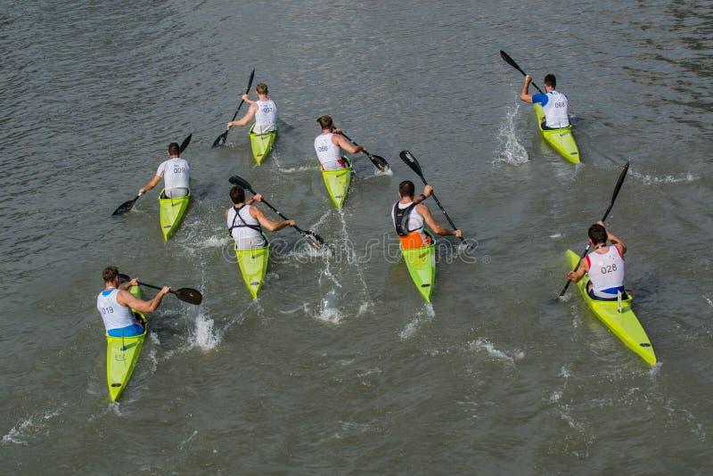 Het prachtige kayaking toont