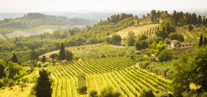Het prachtige kleurrijke landschap van Toscanië op zonlicht stock afbeelding