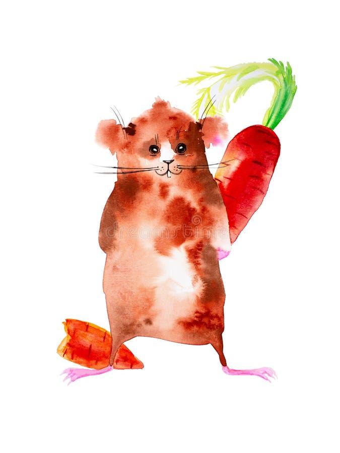 Het proefkonijn houdt achter gebeten wortel Sluwe Ogen Daarna is een stuk wortelen Grappige die waterverfillustratie op wit wordt stock illustratie