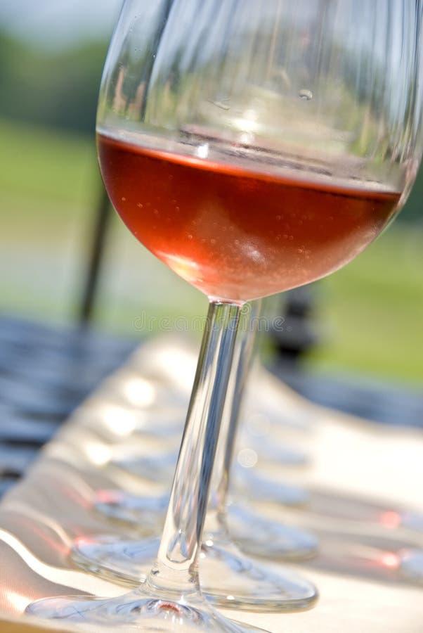 Het Proeven van de wijn in de Wijngaard stock afbeeldingen