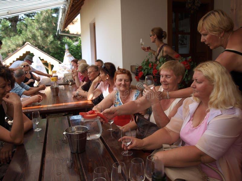 Het proeven van de wijn, Sremski Karlovci, Servië stock foto