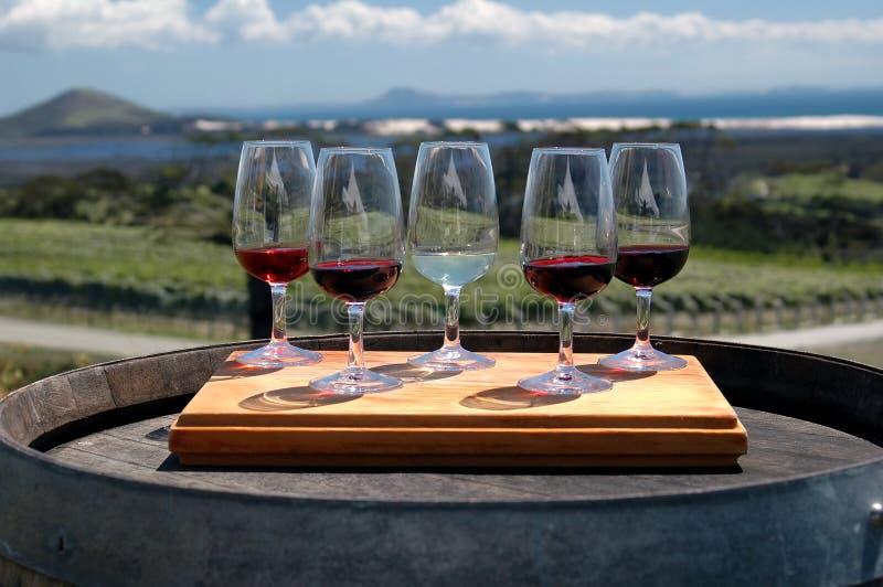 Het Proeven van de wijn - Wijngaard stock afbeeldingen