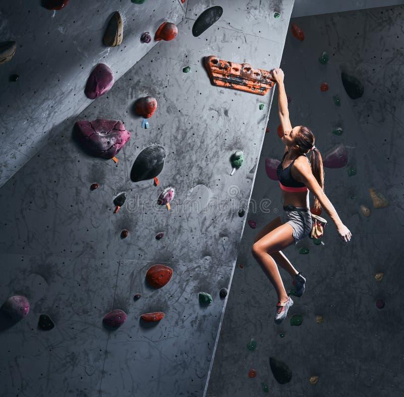 Het professionele vrouwelijke klimmer hangen op de bouldering muur, praktizeert binnen beklimmend royalty-vrije stock afbeelding
