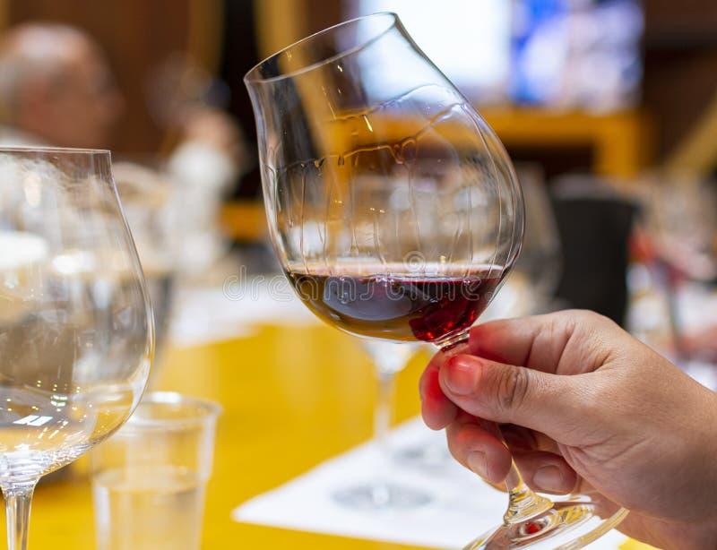 Het professionele wijn proeven, meer sommelier cursus, die rode droge wijn in wijnglas bekijken stock foto's