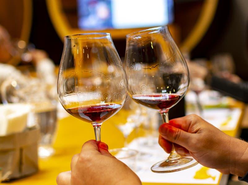 Het professionele wijn proeven, meer sommelier cursus, die rode droge wijn in wijnglas bekijken royalty-vrije stock afbeelding