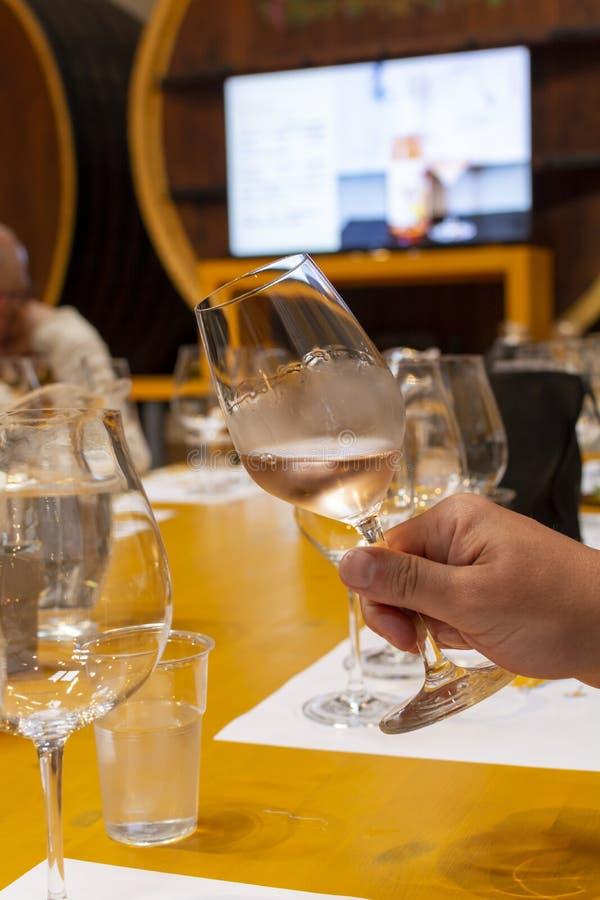 Het professionele wijn proeven, meer sommelier cursus, die roze droge wijn in wijnglas bekijken royalty-vrije stock afbeeldingen