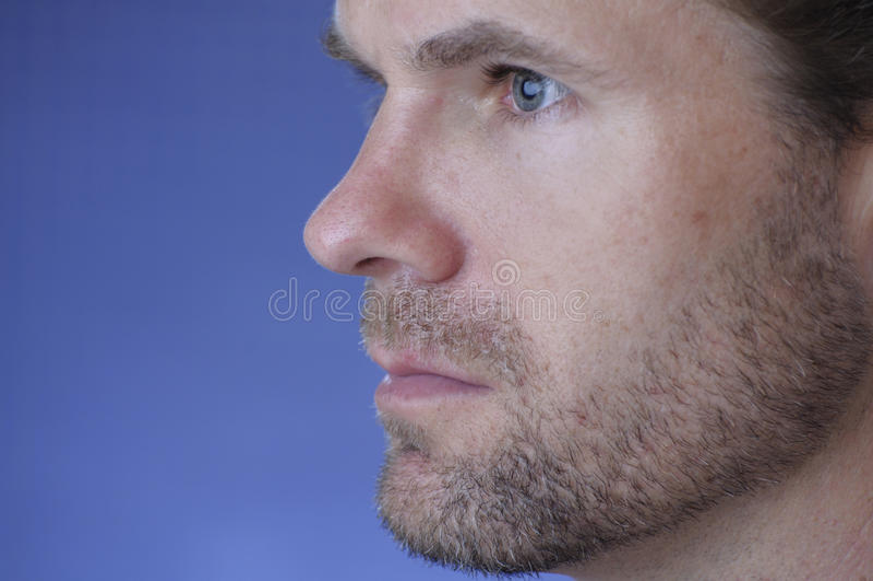 Het profiel van het gezicht royalty-vrije stock foto