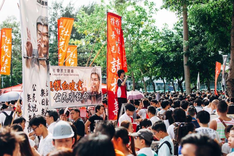 1 het protest van Juli 2014 royalty-vrije stock foto's
