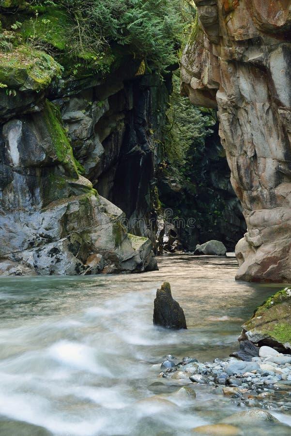 Het Provinciale Park van de Coquihallacanion stock foto's