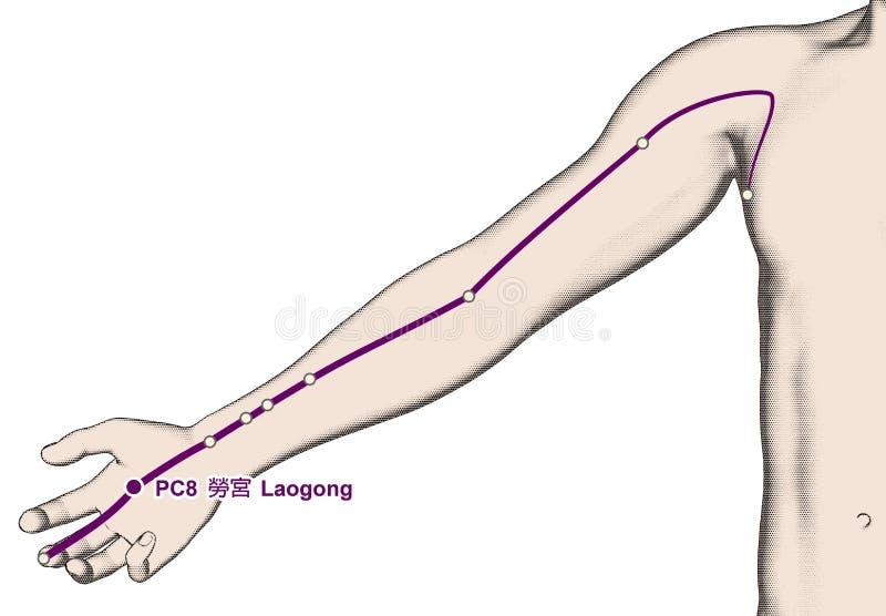Het Punt PC8 Laogong, 3D Illustratie van de tekeningsacupunctuur stock illustratie